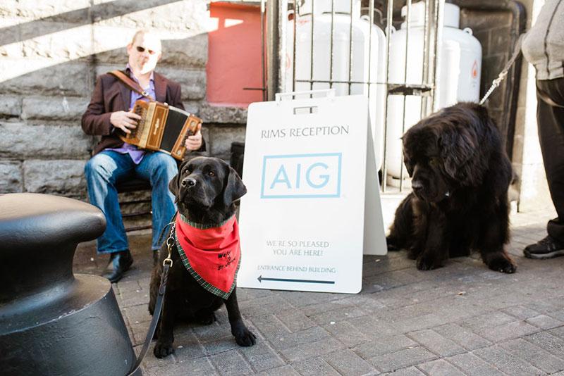 AIG-Insurance030